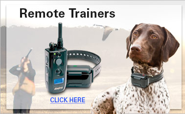 Remote Trainers
